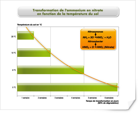 Transformation de l'ammonium